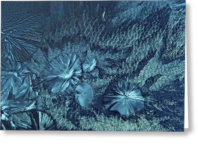 Edta Crystals Greeting Card by Marek Mis