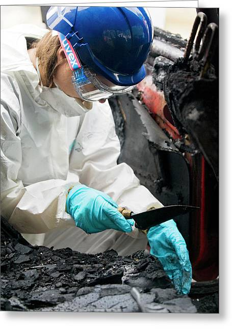 Forensics Training Greeting Card by Jim Varney/science Photo Library