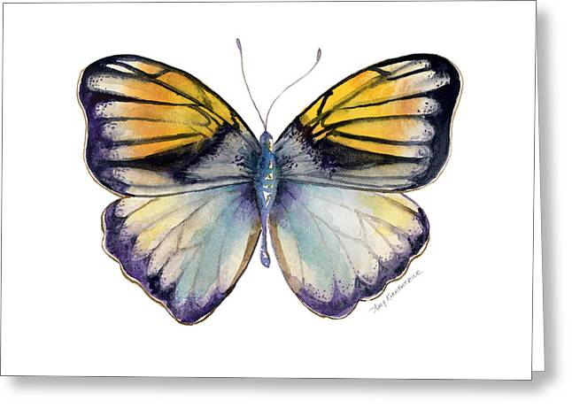 14 Pieridae Butterfly Greeting Card