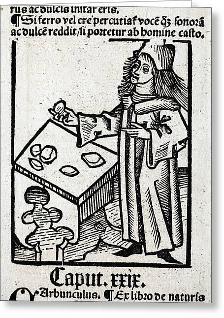 1491 Medieval Apothecary Hortus Sanitatis Greeting Card by Paul D Stewart