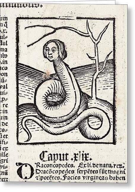 1491 Snake Woman Eve Hortus Sanitatis Greeting Card by Paul D Stewart