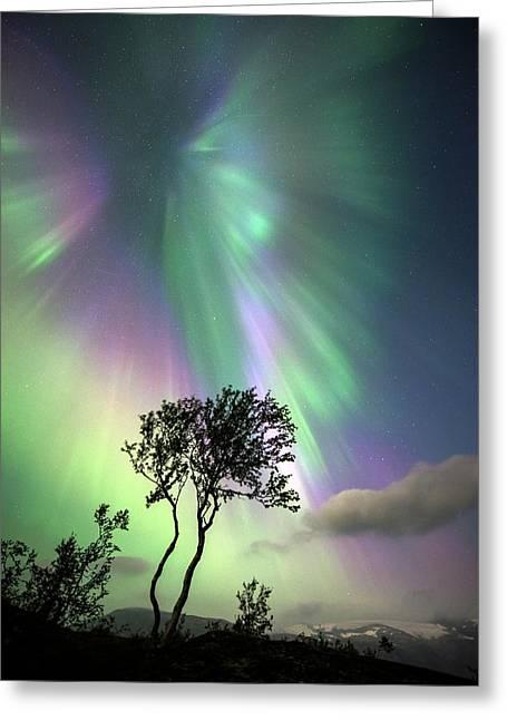 Aurora Borealis Greeting Card
