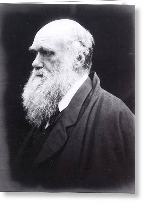 Charles Darwin (1809-1882) Greeting Card by Granger