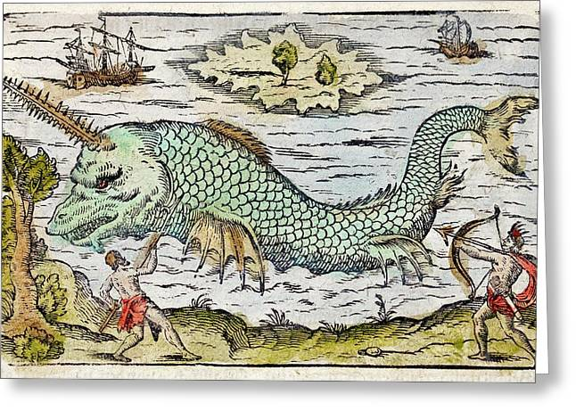 1582 Sawfish Pristis As Sea Unicorn Greeting Card by Paul D Stewart