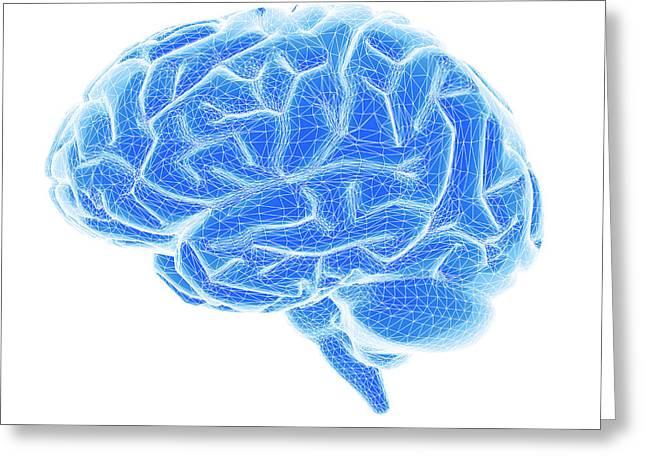 Brain Greeting Card