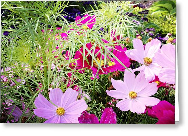 Flowers Greeting Card by Les Cunliffe