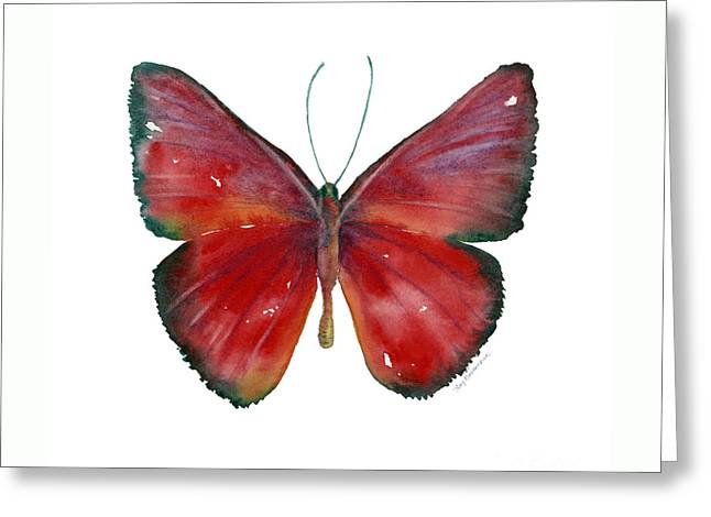 16 Mesene Rubella Butterfly Greeting Card