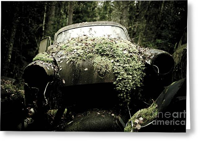 The Car Cemetery Greeting Card by Geir Kristiansen