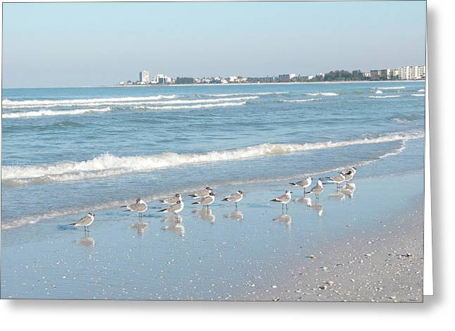 Usa, Florida, Sarasota, Crescent Beach Greeting Card by Bernard Friel