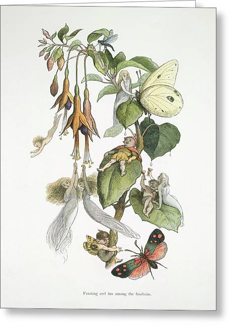 In Fairy Land Greeting Card by British Library