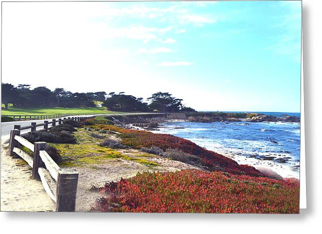 17 Mile Drive Shore Line II Greeting Card