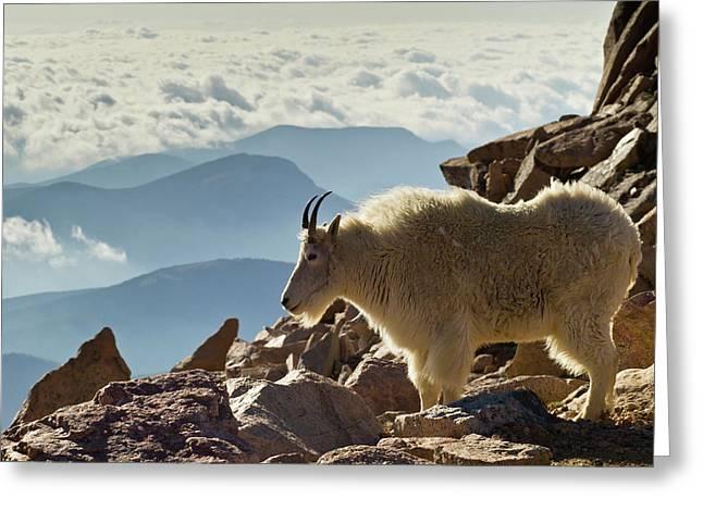 Usa, Colorado, Mount Evans Greeting Card