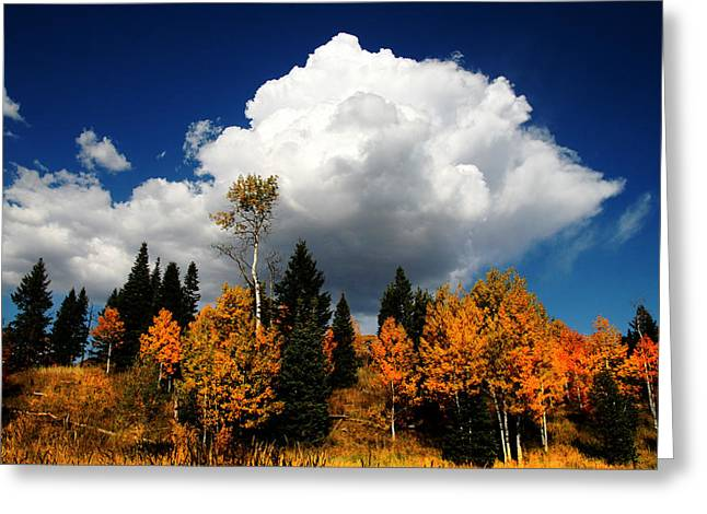 Rocky Mountain Fall Greeting Card