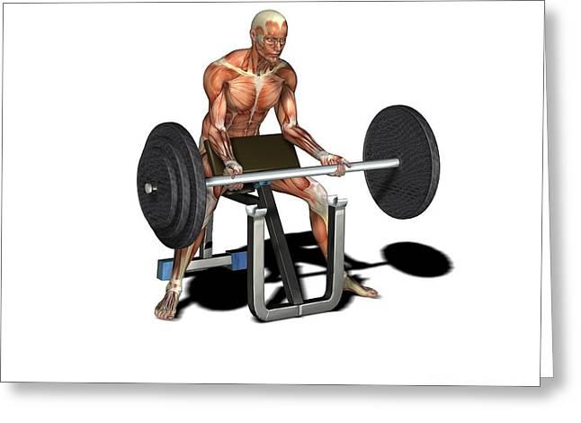 Male Muscles, Artwork Greeting Card by Friedrich Saurer