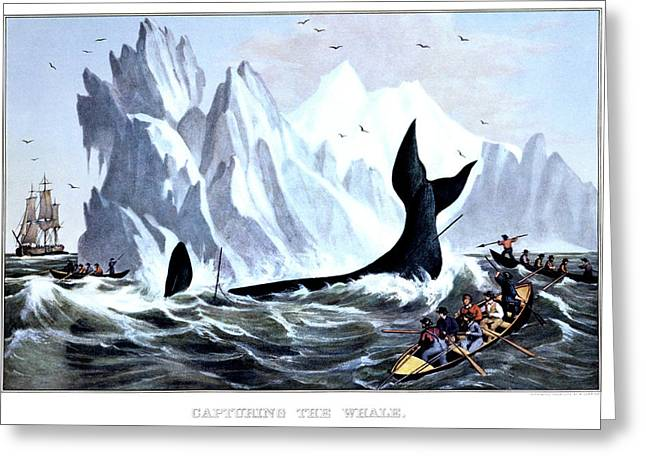 1850s Capturing The Whale - Currier & Greeting Card