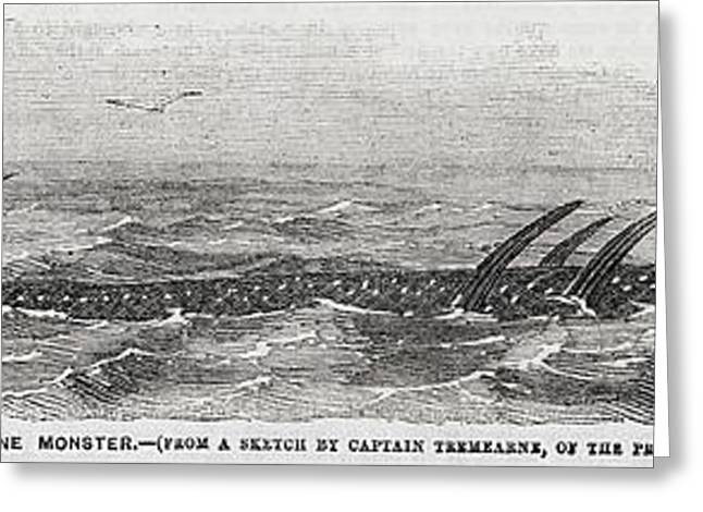 1856 Princess Many-finned Sea Monster Greeting Card