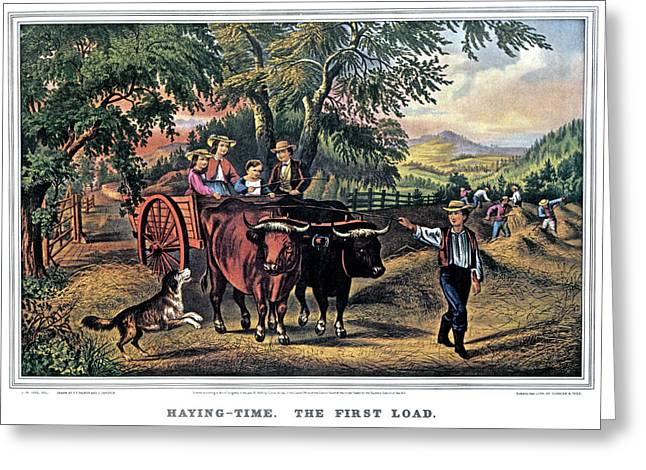 1860s Haying Time The First Load - Greeting Card