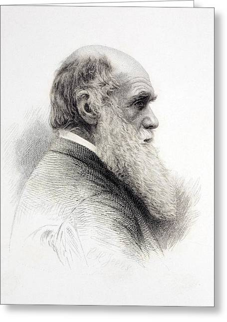 1874 Charles Darwin Fine Engraving Jeens Greeting Card by Paul D Stewart