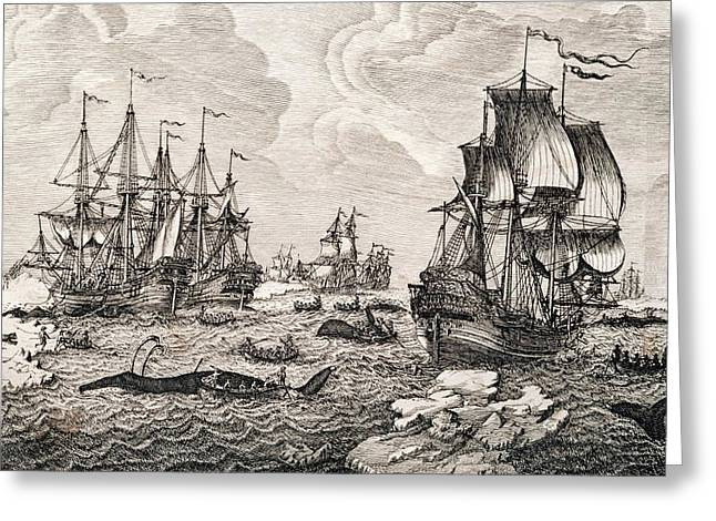 18th Century Dutch Whaling Fleet Greeting Card by George Bernard/science Photo Library
