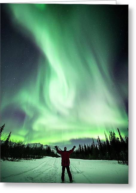 Aurora Borealis In Alaska Greeting Card by Chris Madeley