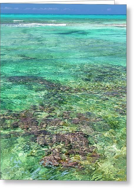 Bahamas, Exuma Island Greeting Card by Jaynes Gallery