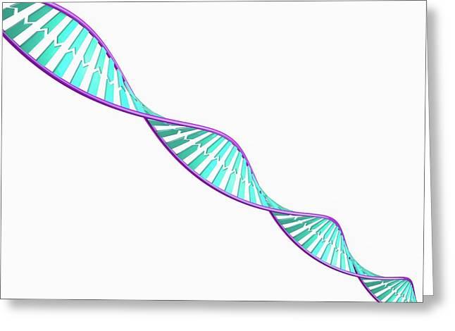 Dna Molecule Greeting Card by Maurizio De Angelis