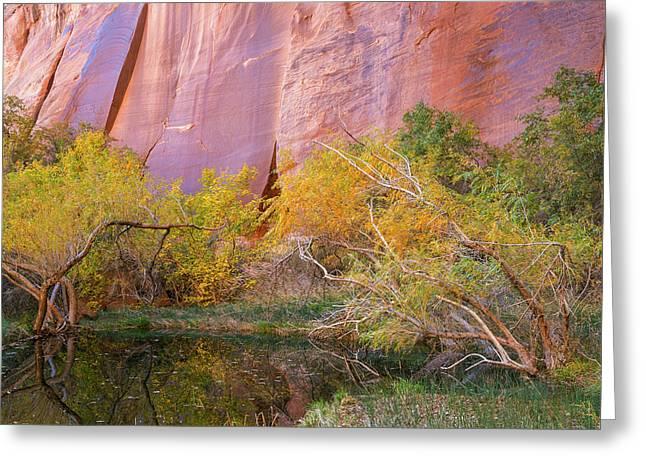 Utah, Glen Canyon National Recreation Greeting Card
