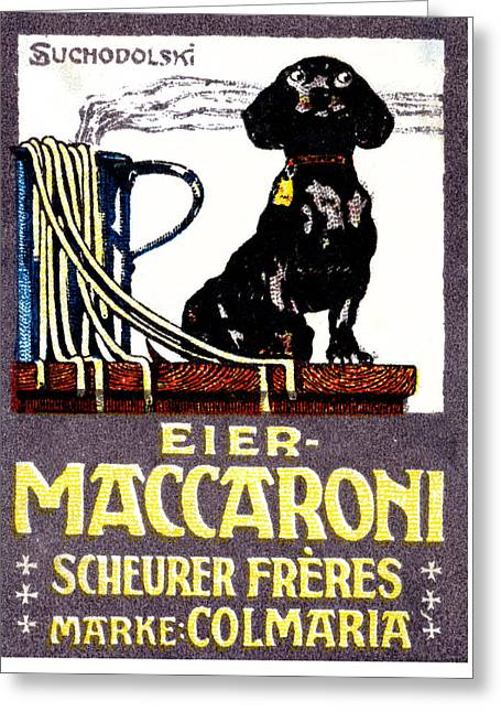 1910 Dachshund And Macaroni Poster    Greeting Card by Historic Image
