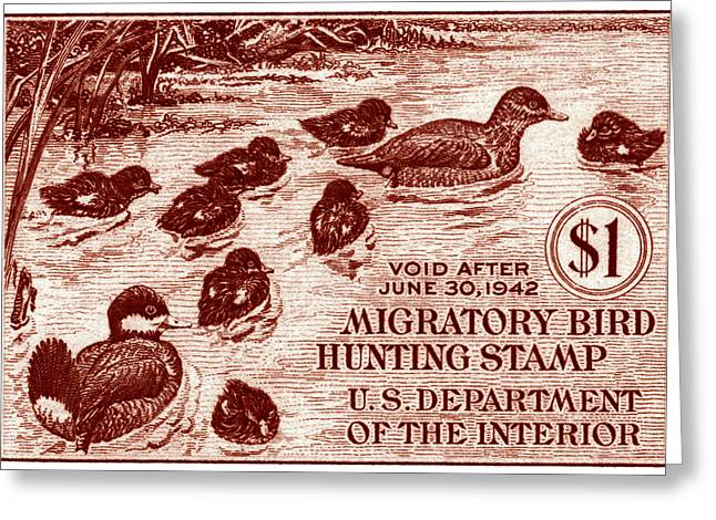 1941 American Bird Hunting Stamp Greeting Card by Historic Image