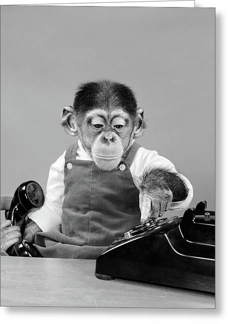 1950s Chimpanzee In Overalls Dialing Greeting Card