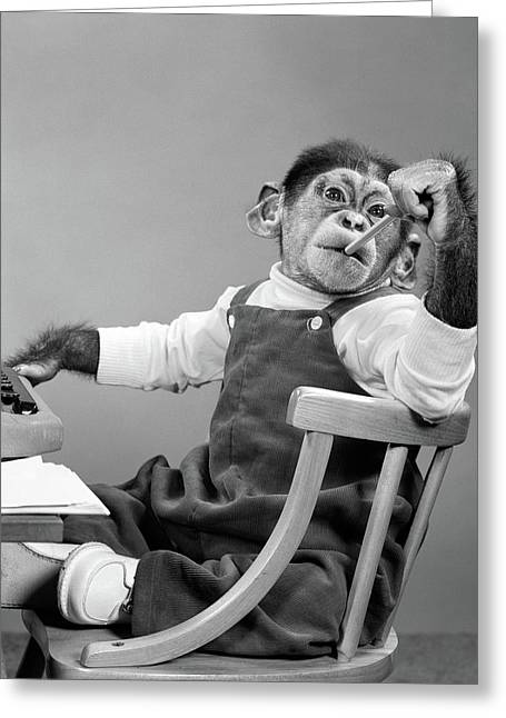 1950s Chimpanzee In Overalls Sitting Greeting Card