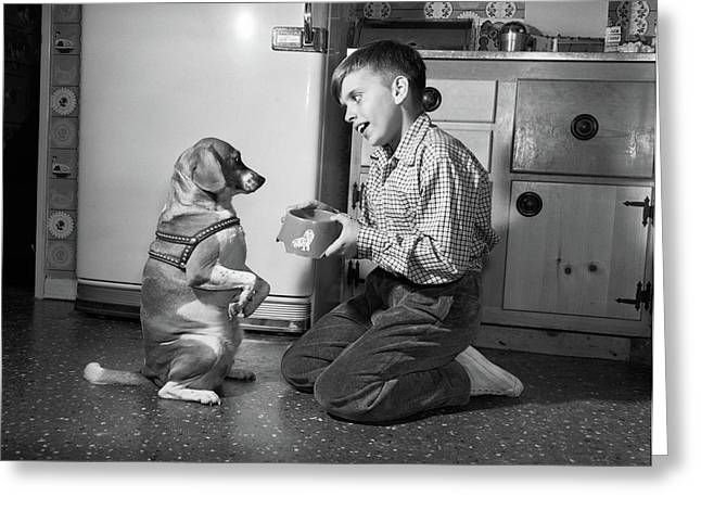1950s Dog Sitting Up Begging In Front Greeting Card