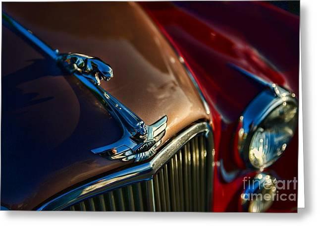 1953 Jaguar Mk7 Greeting Card by Paul Ward