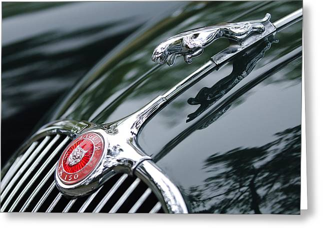 Jaguar Xk 150 Hood Ornament  Greeting Card by Jill Reger