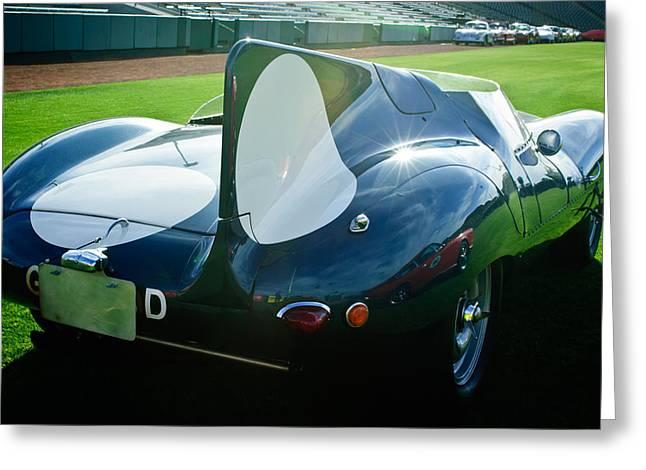 1956 Jaguar D-type Greeting Card by Jill Reger