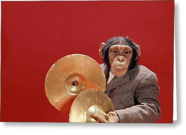 1960s Chimpanzee Wearing Tweed Sports Greeting Card