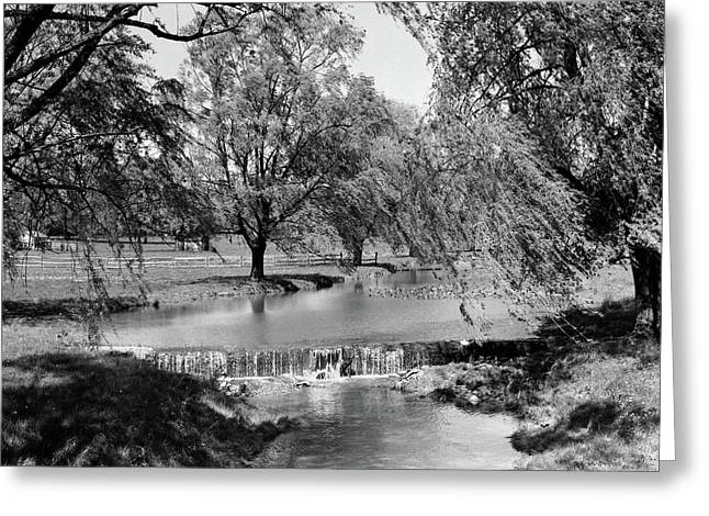 1960s Stream With Small Waterfall Greeting Card