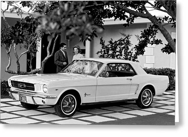 1964 Ford Mustang Greeting Card by Underwood Archives