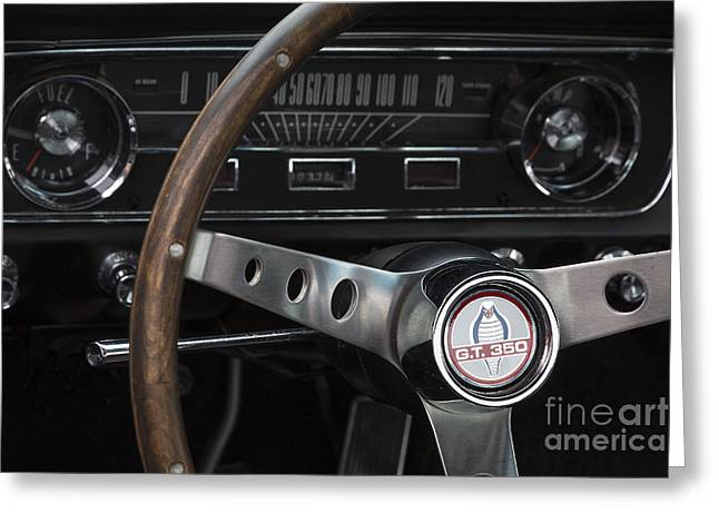 1965 Shelby Gt Greeting Card