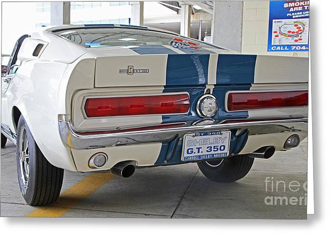 1967 Mustang Shelby Gt-350 Greeting Card