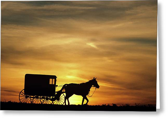 1980s Amish Horse And Buggy Silhouetted Greeting Card