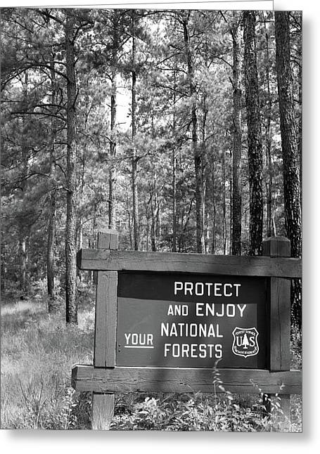 1980s Sign In Front Of Wooded Area Greeting Card