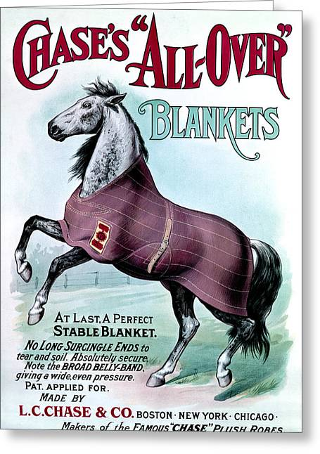 19th C. Chase's Horse Blankets Greeting Card