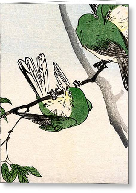 19th C. Green Japanese Sparrows Greeting Card