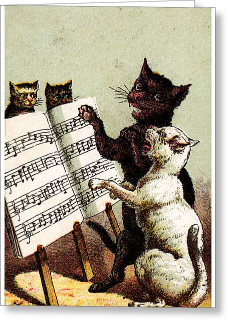 19th C. Quartet Of Singing Cats Greeting Card by Historic Image