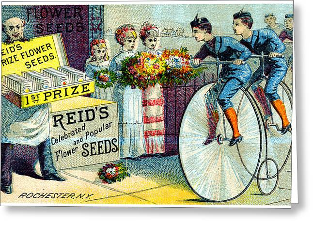 19th C. Reid's Flower Seeds Greeting Card by Historic Image