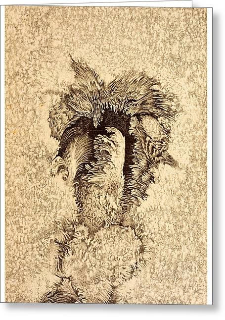 19th Century Sunspot Illustration Greeting Card