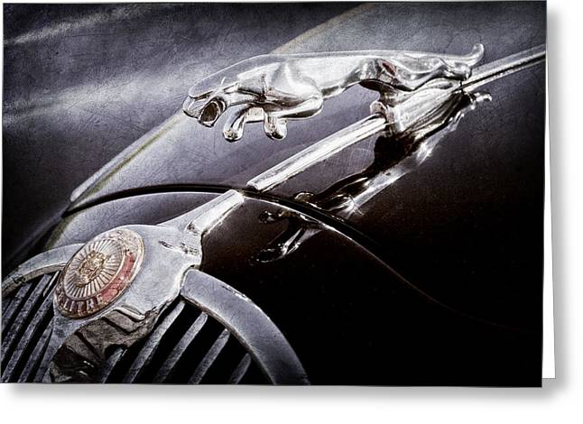 1964 Jaguar Mk2 Saloon Hood Ornament And Emblem Greeting Card by Jill Reger