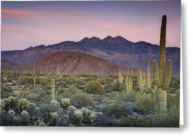 A Desert Sunset  Greeting Card by Saija  Lehtonen