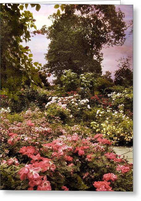 A Garden Somewhere Greeting Card by Jessica Jenney